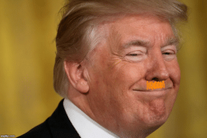 Everyday Idiots call Trump Hitler; I think he should grow the goofy stache and Troll 'em all!: imgflip.com Everyday Idiots call Trump Hitler; I think he should grow the goofy stache and Troll 'em all!