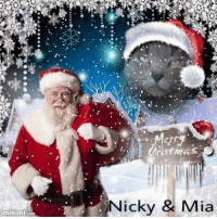 imikim  Merry  Nicky  Mia Happy December wishes from my dear furiends Nicky & Mia! Purrlease stop by and like their page! <3 <3