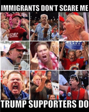 Why are they always so angry?: IMMIGRANTS DONT SCARE ME  RUMP  ENCE  TR  TRUMP SUPPORTERSD0 Why are they always so angry?