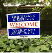 Memes, Newman, and Immigration: IMMIGRANTS  & REFUGEES  WELCOME  WE MUST NOT  STAND IDLY BY  LEVITICUS 19 We must not stand idly by! ✊🏾 - ImmigrantsMakeAmericaGreat HereToStay immigration refugeesarewelcome PC: @newman_c