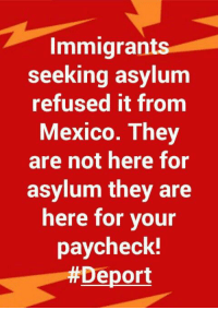 Memes, Mexico, and 🤖: Immigrants  seeking asylum  refused it from  Mexico. I hey  are not here for  asylum they are  here for vour  paycheck!  Deport