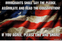 Memes, 🤖, and The Pledge: IMMIGRANTS SHALL SAY THE PLEDGE  ASSIMILATE AND READ THE CONSTITUTION!  IF YOU AGREE, PLEASE LIKE AND SHARE!  mematic net Re-post if you agree!