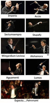 Dank, 🤖, and Potter: Imperio  Accio  Sectumsempra  stupefy  Wingardium Leviosa  Alohamora  Aguamenti  Lumos  Expecto.....Patronum! Harry Potter and the Chamber of Music http://9gag.com/gag/aKwbMx1?ref=fbp  Download official 9GAG app on your Android now: http://9gag.com/android