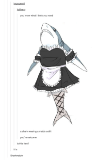 Shark, Free, and Sharks: impopentti  italiham  you know what i think you need  a shark wearing a maids outfit  you're welcome  Is this free?  it is  Sharkmaido