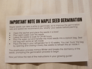 Instructions unclear, seeds now serve the Soviet Union.: IMPORTANT NOTE ON MAPLE SEED GERMINATION  Maple seeds can take a while to germinate, so to improve the germination  rate and speed we recommend you 'stratify' your seeds before planting:  Open the sachet and place the seeds in a bowl  Pour warm water over the seeds  Leave the seeds to soak for 24-48 hours  Pour the water out and transfer the moist seeds into a ziplock bag. Seal  the bag with some air left inside  Place the bag in your refrigerator for 5-10 weeks. You can 'burp' the bag  by opening and closing it every few weeks to refresh the air inside it  This stratification process mimics Winter and breaks the dormancy of the  seeds, prompting the germination process to begin.  Now just follow the rest of the instructions in your growing guide! Instructions unclear, seeds now serve the Soviet Union.