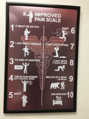 Bad, Work, and Bear: IMPROVED  PAIN SCALE  IT MIGHT BE AN ITCH  2  I JUST NEED A BANDAID CAN'T STOP GRYING  ITS KIND OF ANNOYING  I CAN'T MOVE  IT HURTS SO BAD  ?#S!  42  THIS IS CONCERNING  BUT I CAN STILL WORK  MAULED BY A BEAR  OR NINJAS  10  BEES?  5  UNCONSCIOUS Pain scale from my PT's office