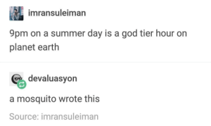 God, Summer, and Earth: imransuleiman  9pm on a summer day is a god tier hour on  planet earth  % devaluasyon  a mosquito wrote this  Source: imransuleiman 9pm on a summer day