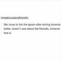What?: imreallycooland friendly:  Me: loves to lick the spoon after stirring brownie  batter, doesn't care about Sal Monella, whoever  that is What?