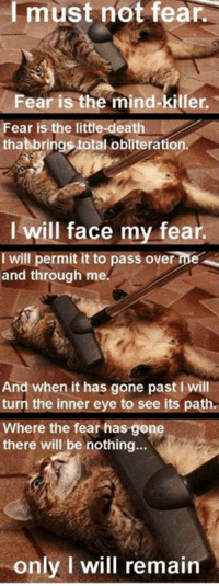Memes, Death, and Fear: Imust not fear.  Fear is the mind-killer  Fear is the little-death  thatbrings total obliteration  I will face my fear.  I will permit it to pass over me  and through me.  And when it has gone past I will  turn the inner eye to see its path.  Where the fear has gone  there will be nothing...  only I will remain