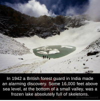 Frozen, Memes, and fb.com: In 1942 a British forest guard in India made  an alarming discovery. Some 16,000 feet above  sea level, at the bottom of a small valley, was a  frozen lake absolutely full of skeletons.  fb.com/factsweird