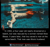 Memes, Beach, and Husband: In 1965, a four-year-old nearly drowned at a  beach, but was rescued by a woman named Alice  Blaise. 9 years later, that boy saved a man at the  same beach. That man Wa S Alice S husband.  /didyouknowpagel  @didyouknowpage