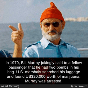 bombs: In 1970, Bill Murray jokingly said to a fellow  passenger that he had two bombs in his  bag. U.S. marshals searched his luggage  and found US$20,000 worth of marijuana.  Murray was arrested.  weird-facts.org  @factsweird