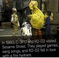 Fire, Love, and R2-D2: In 1980, C-3PO and R2-D2 visited  Sesame Street. They played games,  sang songs, and R2-D2 fell in love  with a fire hydrant. me🤖irl