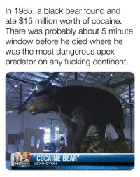 Fucking, News, and Apex: In 1985, a black bear found and  ate $15 million worth of cocaine.  There was probably about 5 minute  window before he died where he  was the most dangerous apex  predator on any fucking continent.  COCAINE BEAR  NEWS LEXINGTON Scariest 5 minutes of all time