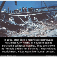 """This made me smile :) big up to all of the Mexicans 🇲🇽: In 1985, after an 8.0 magnitude earthquake  hit Mexico City, nearly all newborn babies  survived a collapsed hospital. They are known  as """"Miracle Babies"""" for surviving 7 days without  nourishment, water, warmth or human contact.  weird facts org  @factsweird This made me smile :) big up to all of the Mexicans 🇲🇽"""