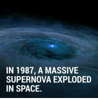 On February 23, 1987, Supernova 1987A first appeared above our earthly skies. It was the closest supernova observed since 1604. @science will be running a story on this historic event. Make sure to check us out!: IN 1987, A MASSIVE  SUPERNOVA EXPLODED  IN SPACE On February 23, 1987, Supernova 1987A first appeared above our earthly skies. It was the closest supernova observed since 1604. @science will be running a story on this historic event. Make sure to check us out!