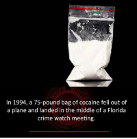 Crime, Memes, and Cocaine: In 1994, a 75-pound bag of cocaine fell out of  a plane and landed in the middle of a Florida  crime watch meeting.