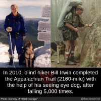 """Facts, Memes, and Weird: In 2010, blind hiker Bill Irwin completed  the Appalachian Trail (2160-mile) with  the help of his seeing eye dog, after  falling 5,000 times.  @facts weird  Photo courtesy of """"Blind Courage"""""""