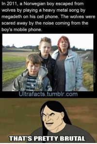 Dealing with danger like a boss!: In 2011, a Norwegian boy escaped from  wolves by playing a heavy metal song by  megadeth on his cell phone. The wolves were  scared away by the noise coming from the  boy's mobile phone  Ultrafacts tumblr com  THATS PRETTY BRUTAL Dealing with danger like a boss!