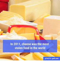 Facts, Food, and Love: In 2011, cheese was the most  stolen food in the world  @FACTS I guff.com Are you surprised by this? Seriously… who doesn't love cheese?!?