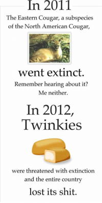 Memes, 🤖, and Cougar: In 2011  The Eastern Cougar, a subspecies  of the North American Cougar  went extinct.  Remember hearing about it?  Me neither.  In 2012  Twinkies  were threatened with extinction  and the entire country  lost its shit. http://t.co/oEH6nIblph