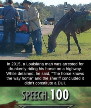 """Howdy: In 2015, a Louisiana man was arrested for  drunkenly riding his horse on a highway.  While detained, he said, """"The horse knows  the way home"""" and the sheriff concluded it  didn't constitute a DUI  SPEECH 100 Howdy"""