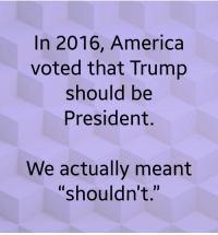 """2016: In 2016, America  voted that Trump  should be  President.  We actually meant  """"shouldn't."""""""
