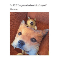 """Girl Memes, Full, and Myself: """"In 2017 I'm gonna be less full of myself""""  Also me: 😬"""