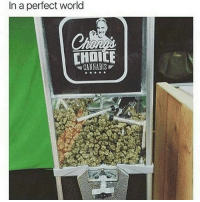 Memes, World, and Cannabis: In a perfect world  CHOICE  CANNABIS I'll take a quarter 🌲😉 @TheDailyChief420