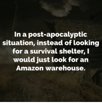 Amazon, Dank, and 🤖: In a post-apocalyptic  situation, instead of looking  for a survival shelter, I  would just look for an  Amazon warehouse.