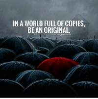 Hustler, Memes, and Money: IN A WORLD FULL OF COPIES  BE AN ORIGINAL  aSuccess Foundation In a world of fakes, be an original. millionairedivision - - - - - - success entrepreneur inspiration motivation business boss luxury wisdom entrepreneurship billionaire millionaire hustler quotes quote money ambition hustle wealth quoteoftheday ceo startup businessman dream rich luxurylife workhardplayhard winner
