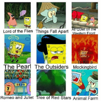 this is well past expiration but 😳😳😳 (oc): IN  All Quiet on the  Lord of the Flies Things Fall Apart  The Pearl The Outsiders Mockingbird  Romeo and Juliet Tree of Red Stars Animal Farm this is well past expiration but 😳😳😳 (oc)