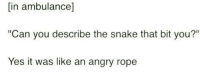 "Memes, Snake, and Angry: [in ambulance]  ""Can you describe the snake that bit you?""  Yes it was like an angry rope <p>Angry rope 🐍 via /r/memes <a href=""https://ift.tt/2Jc0QVh"">https://ift.tt/2Jc0QVh</a></p>"