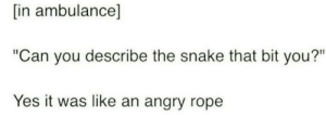 "Snake, Angry, and Yes: [in ambulance]  ""Can you describe the snake that bit you?""  Yes it was like an angry rope"