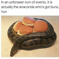 A snake guarding burgers.: In an unforseen turn of events, it is  actually the anaconda who's got buns,  hun A snake guarding burgers.
