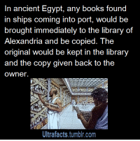 """Books, Church, and Doctor: In ancient Egypt, any books found  in ships coming into port, would be  brought immediately to the library of  Alexandria and be copied. The  original would be kept in the library  and the copy given back to the  owner.  Ultrafacts.tumblr.com <p><a class=""""tumblr_blog"""" href=""""http://agentsama.tumblr.com/post/107299905099/slvrnightx-ultrafacts-aussietory"""">agentsama</a>:</p> <blockquote> <p><a class=""""tumblr_blog"""" href=""""http://slvrnightx.tumblr.com/post/97271985185/ultrafacts-aussietory"""">slvrnightx</a>:</p> <blockquote> <p><a class=""""tumblr_blog"""" href=""""http://ultrafactsblog.com/post/97269070131/aussietory-third-way-is-best-way"""">ultrafacts</a>:</p> <blockquote> <p><a class=""""tumblr_blog"""" href=""""http://aussietory.tumblr.com/post/97037485207/third-way-is-best-way-tuxedoandex"""">aussietory</a>:</p> <blockquote> <p><a class=""""tumblr_blog"""" href=""""http://third-way-is-best-way.tumblr.com/post/97026410042/tuxedoandex-kvotheunkvothe-ultrafacts"""">third-way-is-best-way</a>:</p> <blockquote> <p><a class=""""tumblr_blog"""" href=""""http://tuxedoandex.tumblr.com/post/97009990157/kvotheunkvothe-ultrafacts-source-for-more"""">tuxedoandex</a>:</p> <blockquote> <p><a class=""""tumblr_blog"""" href=""""http://kvotheunkvothe.tumblr.com/post/91996111874/ultrafacts-source-for-more-facts-follow"""">kvotheunkvothe</a>:</p> <blockquote> <p><a class=""""tumblr_blog"""" href=""""http://ultrafactsblog.com/post/91744814059/source-for-more-facts-follow-ultrafacts"""">ultrafacts</a>:</p> <blockquote> <p><a href=""""http://en.wikipedia.org/wiki/Library_of_Alexandria#Destruction_of_the_Library"""">Source</a> <strong>For more facts <a href=""""http://ultrafacts.tumblr.com/"""">follow Ultrafacts</a></strong></p> </blockquote> <p>EVERY TIME SOMEONE BRINGS UP THE LIBRARY OF ALEXANDRIA I GET <strong>SO ANGRY</strong>.</p> </blockquote> <p>but why</p> </blockquote> <p>Because it got burned. All of that knowledge, lost forever.</p> </blockquote> <p><img alt="""""""" src=""""https://78.media.tumblr.com/tumblr_lkdeee4gtd1qd4jgjo1_500.jpg""""/></p> </bl"""
