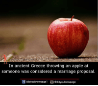 Apple, Marriage, and Memes: In ancient Greece throwing an apple at  someone was considered a marriage proposal  団/d.dyouknowpagel  ü@didyouknowpage