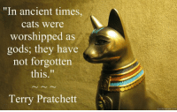 """Memes, Ancient, and 🤖: """"In ancient times,  cats were  worshipped as  gods: they have A  not forgotten  this  Terry Pratchett  quick menne com"""