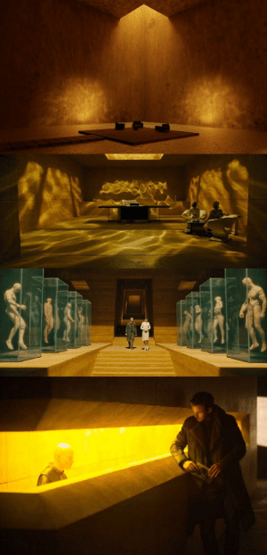 In Blade Runner 2049 (2017), Niander Wallace's headquarters are made of wood, a rare and very expensive material in 2049, to emphasize how wealthy he is.: In Blade Runner 2049 (2017), Niander Wallace's headquarters are made of wood, a rare and very expensive material in 2049, to emphasize how wealthy he is.