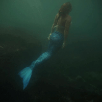 In Brazil, the mythical creature of the sea has been brought to life as a group of women use their free diving and underwater dancing skills to transform themselves into mermaids. They recently posed for spectators at the Sao Paulo Aquarium. PHOTOS: REUTERS-Pilar Olivares BBCSnapshot photography mermaid Brazil diving freediving underwater underwaterphotography: In Brazil, the mythical creature of the sea has been brought to life as a group of women use their free diving and underwater dancing skills to transform themselves into mermaids. They recently posed for spectators at the Sao Paulo Aquarium. PHOTOS: REUTERS-Pilar Olivares BBCSnapshot photography mermaid Brazil diving freediving underwater underwaterphotography