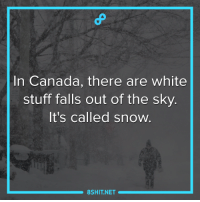 Fall, Guns, and Memes: In Canada, there are white  stuff falls out of the sky  It's called snow.  8 SHIT NET In Russia, they call it Gun powder. XD