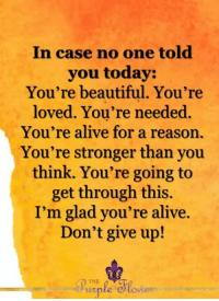 <3: In case no one told  you today:  You're beautiful. You're  loved. You're needed.  You're alive for a reason.  You're stronger than you  think. You're going to  get through this  I'm glad you're alive.  Don't give up!  de  THE  wiple <3