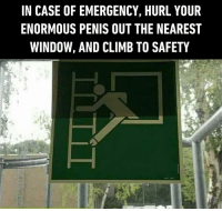 Dank, Penis, and Relatable: IN CASE OF EMERGENCY, HURL YOUR  ENORMOUS PENIS OUT THE NEAREST  WINDOW, AND CLIMB TO SAFETY Not relatable.