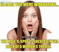 Yes...  Yes it is. Lol🌙: IN CASE  YOU WERE WONDERING  Freaks only  THE  MALE G-SPOT ISLOCATED IN THE  BACK OF AWOMAN'S THROAT Yes...  Yes it is. Lol🌙