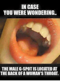 ;) ;) ;): IN CASE  YOU WERE WONDERING  THE MALE G-SPOT IS LOCATED AT  THE BACK OF A WOMAN'S THROAT ;) ;) ;)