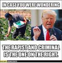 Confused, Memes, and Ups: IN CASE YOUWEREWONDERING  THERAPISTANDCRIMINAL  ISTHE ONE ON THE RIGHT  OCCUPY DEMOCRATS Just to clear up any confusion.  Stop the World, the Teabaggers Want Off Via Occupy Democrats