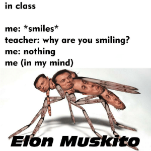 In My Mind: in class  me: smiles  teacher: why are you smiling?  me: nothing  me (in my mind)  on Muskito