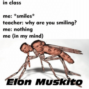 25 ROFL Memes hilarious – Self Worth Quotes: in class  me: *smiles*  teacher: why are you smiling?  me: nothing  me (in my mind)  Elon Muskito 25 ROFL Memes hilarious – Self Worth Quotes