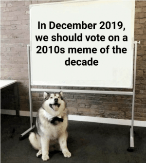 Meme, Reddit, and December: In December 2019,  we should vote on a  2010s meme of the  decade Proposal of the decade