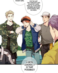 """Memes, Link, and Omega: IN EAST CATE  FOR THE LAST  TWO YEARS,EAST GATE  1S RULED BY A BETA  MALE. ALL OF HIS CANG  MEMBERS ARE EITHER  ALPHA FEMALE, BETA,  OR OMECA.  A BETA  LEADER...?""""  IS THAT  POSSIBLE? 😂😂😂 - Comic: Our Omega Leadernim By: .MIJIN. Chap.25 Link: Webtoon"""